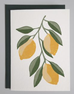 Card with hand drawn lemons on a white background